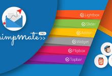 ChimpMate Pro v1.3.3 - WordPress MailChimp Eklentisi İndir