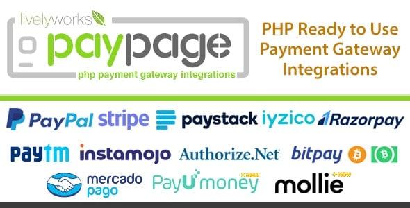 PayPage v1.3.0 - Hazır Ödeme Script İndir